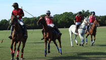 HORSE & POLO HALF DAY IN WINDSOR, London, 4WD, ATV & Off-Road Tours