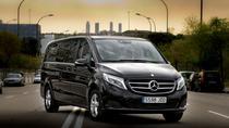 Private Business Van Transfer: Genoa city to GOA Airport or Savona or Portofino, Genoa, Bus &...