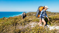 Cooloola 5 jours de marche de Noosa Heads à Rainbow Beach, Noosa & Sunshine Coast, Multi-day Tours