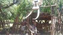 Traditional Tribal Village Tour, Johannesburg, Day Trips