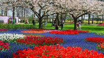 Keukenhof Gardens Transportation and Skip-the-Line Ticket from Amsterdam, Amsterdam, Day Trips