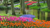 Skip-the-line Keukenhof Gardens including Transportation from Amsterdam and Fast-Track Entrance to ...