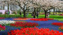 Transport and Entrance Ticket to Keukenhof with Optional Visit to A'DAM Lookout Tower from ...