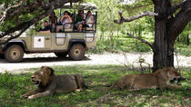 2 Days 1Night Selous Game Reserve, Zanzibar City, Multi-day Tours