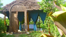 Jozani Forest & Village Spa Includes Swahili Lunch in Zanzibar, Zanzibar City, Cultural Tours