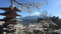 Private Tour: Chartered Car to Mt. Fuji and Hakone Lake Ashi, Tokyo, Private Day Trips