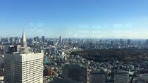 Tokyo City Tour: Private Chauffeur Guide with Chartered Car , Tokyo, Private Sightseeing Tours