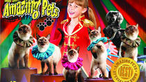 Amazing Pets Show in Branson, Branson, Theater, Shows & Musicals