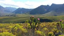 KOGELBERG BIOSPHERE HIKE, Cape Town, Hiking & Camping