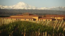 Wine Tour with Lunch from Mendoza, Mendoza, Private Sightseeing Tours