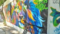Bike Tour in Playa del Carmen visiting artistic murals, Playa del Carmen, Bike & Mountain Bike Tours