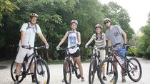Mayan Jungle Mountain Bike Tour for Beginners with Cenote Swim, Playa del Carmen, Bike & Mountain ...