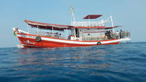 Full Day Dive Adventure in National Marine Park Koh Rang including 2 Dives and Lunch, Ko Chang,...