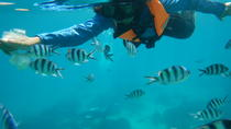 Full day snorkeling adventure, Ko Chang, 4WD, ATV & Off-Road Tours