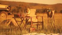 Full-Day Kruger Wildlife Safari from Hoedspruit, Kruger National Park, Safaris