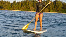 Family Private Stand Up Paddle Tours, Oahu, Stand Up Paddleboarding