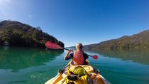 Full-Day Guided Sea Kayaking Trip from Anakiwa, Picton, Kayaking & Canoeing