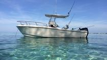 Private Fishing and Snorkeling Island Adventure, Cayman Islands