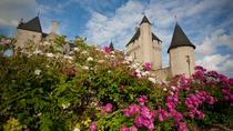 Loire Valley Chateau du Rivau and Gardens Admission Ticket with Audioguide, Chinon, Attraction ...