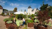 Lunch at Fairy Tale Loire Valley Château and Gardens du Rivau, Chinon, Attraction Tickets