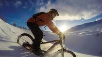 Fat Bike Tour at Lake Mývatn from Reykjahlíð, Noord-IJsland