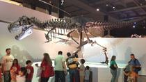 Houston Museum of Natural Science General Admission, Houston, Sightseeing & City Passes
