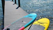 Mangrove Paddleboard Tour Through Woolverton Trails in Charlotte Harbor, Fort Myers, Stand Up...