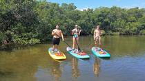 Stand Up Paddle Board Tour of Don Pedro Island with Optional Snorkeling, Fort Myers, Stand Up ...
