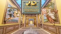 Entrada al 3D Museum of Wonders, Playa del Carmen, Museum Tickets & Passes