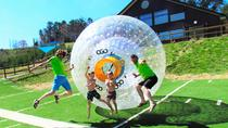 The OGO Experience in Pigeon Forge, Pigeon Forge, Attraction Tickets