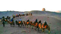 Private camel riding in the Gobi desert, Dunhuang, Nature & Wildlife