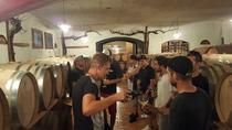 Wine tour - half day tour, Slovenia, Wine Tasting & Winery Tours