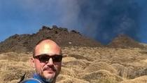 Etna Trekking private car and guide from Catania, Catania, Day Trips
