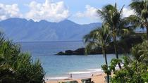 Half-Day Guided Private Tour of Maui Island with Hotel Pickup, Maui, null