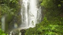 Private Hana Adventure , Maui, Private Sightseeing Tours