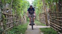 Full-Day Bali Off the Beaten Track Bike Tour, Bali, Bike & Mountain Bike Tours