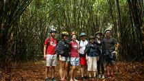 Full-Day Bali Off the Beaten Track Bike Tour, Ubud, Bike & Mountain Bike Tours