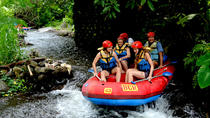 Full-Day White Water Rafting Adventure on the Telaga Waja River, Ubud, White Water Rafting