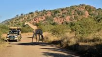 3-Hour Private Game Drive of Pilanesberg National Park, North West, Safaris