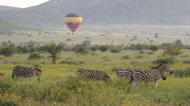 Hot Air Balloon Safari at Pilanesberg National Park, North West, Balloon Rides