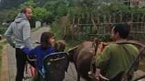 1 Day Yangshuo Countryside Cycling and Yulong bamboo boat Private Day Tour, Guilin, Private ...