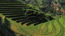 Private Custom Tour: 2 days Longji rice terraces private tour, Guilin, Custom Private Tours