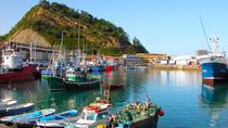 Full-Day Guipuzcoa Coast Tour from San Sebastian with Lunch, San Sebastian, Wine Tasting & Winery...