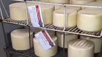 Half Day Basque Cheese and Seafood Tour from San Sebastian, San Sebastian, Food Tours