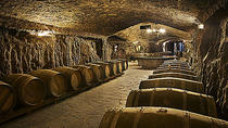 Wine Cellar Visit with Tasting and Lunch in La Rioja, San Sebastian, Wine Tasting & Winery Tours
