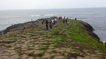 Giants Causeway tour, Londonderry, Half-day Tours