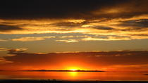 Great Salt Lake Sunset Tour, Salt Lake City, Nature & Wildlife