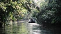 3 Day Tortuguero National Park Experience From San José, San Jose, Multi-day Tours