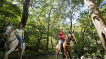 Adventure Tour at Buena Vista Lodge from Guanacaste, Liberia, Day Trips