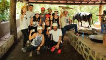 Costa Rica Adventure Tour including Vandara Hot Springs and Canopy Zipline from Liberia, Liberia, ...